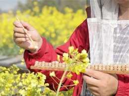 【健康養生】蜂王漿每天吃多少克合適呢?這些食用方式你知道幾個?