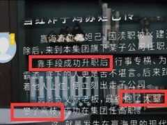 理想之城:太難了,蘇筱遭暗箭,趙顯坤大怒:我請你來吃白飯的?