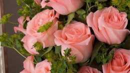 9月份期間,緣分和桃花永無止境,愛情順順利利美滿的四大生肖!