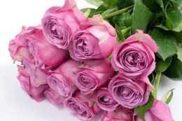 近期內,緣分和桃花釋懷過往,月老助力,愛情迎來重生的四大生肖