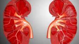 一喝水就尿多,代表腎臟好還是不好?看完這幾點,你或許就明白